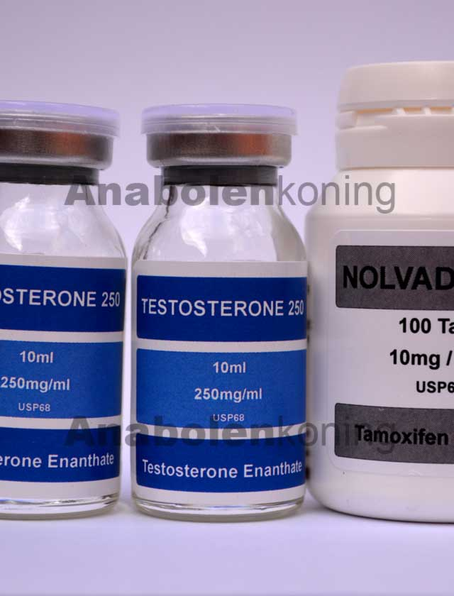 DNA Testosteron-only kuur
